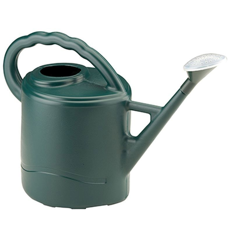 9 litre watering can green buy online at qd stores - Sprinkling cans ...