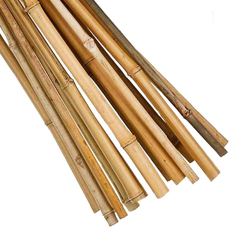 18 Pack 3 Foot Garden Canes