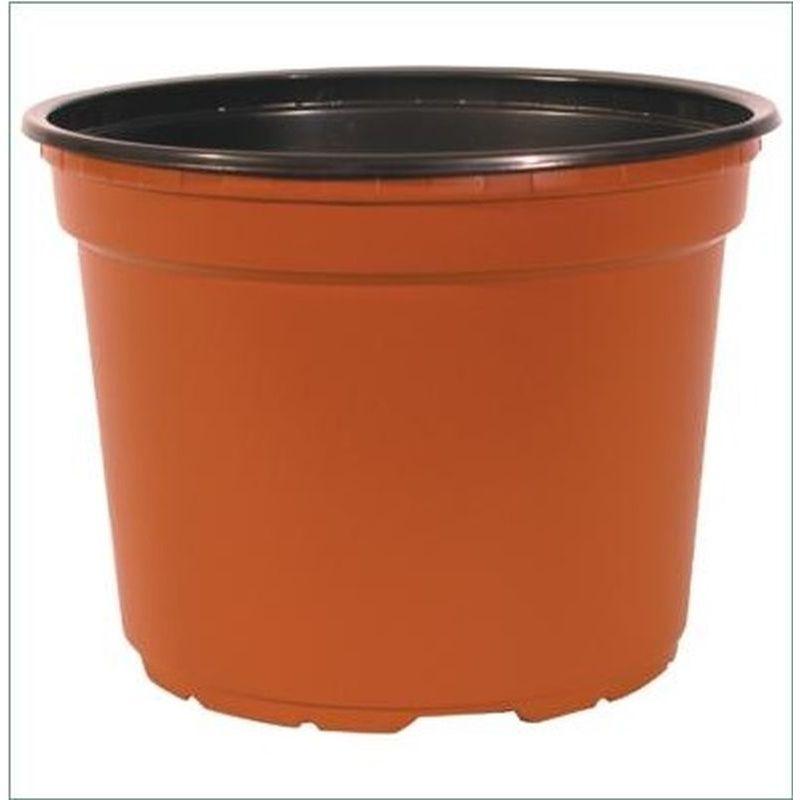 12x9cm Grow Plant Pots Buy Online At Qd Stores