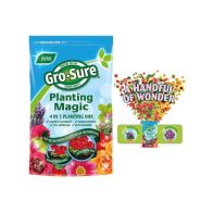 See more information about the Gro-Sure Planting Magic 2kg Planting Mix