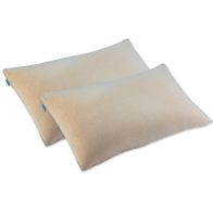 See more information about the 2pk Memory Foam Cirrus Pillow