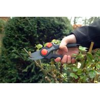 See more information about the AGE: Wilkinson Sword Bypass Pruner