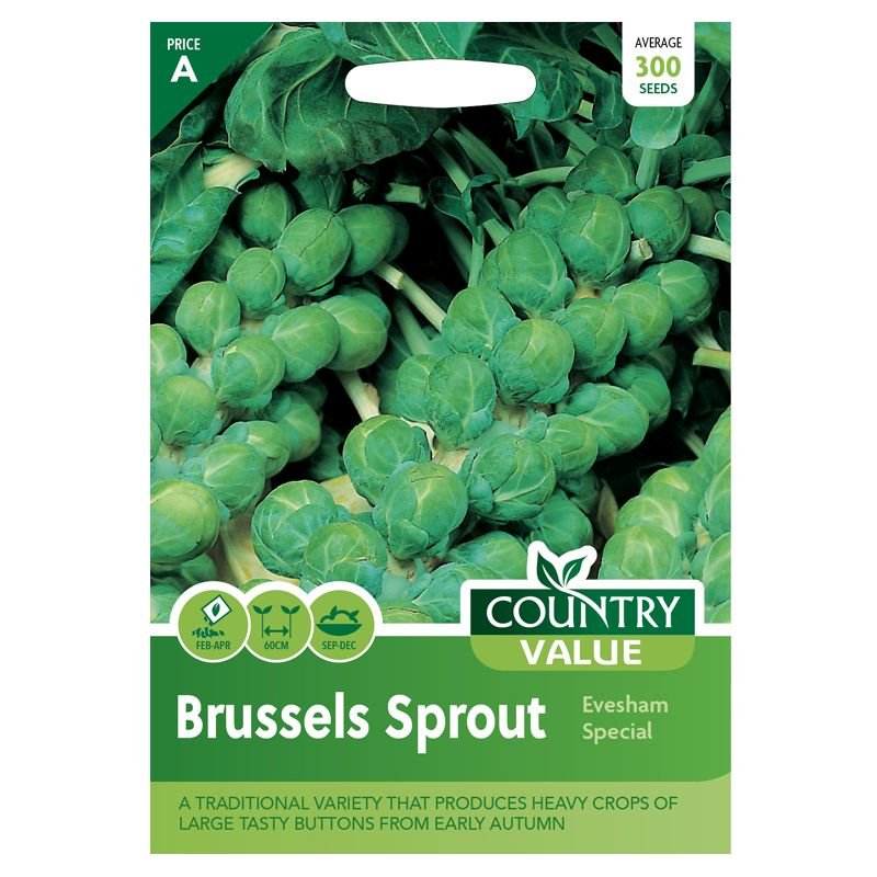 Country Value Brussels Sprout Evesham Seeds
