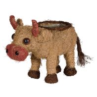 See more information about the Cow Garden Planter Medium