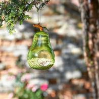 See more information about the Pear Hanging Glass Feeder