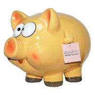 See more information about the Smashy The Super Saving Piggy Bank