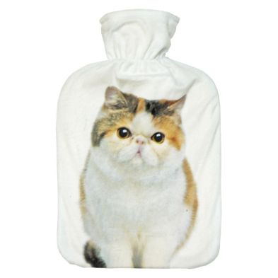 Image of 2 Litre Hot Water Bottle Brown & White White Cat