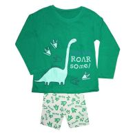 See more information about the Boys Dinosaur Pyjamas Green & Grey 2-3 years