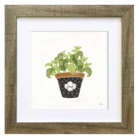 See more information about the Herbs Basil Framed Print Wall Art 10 x 10 Inch