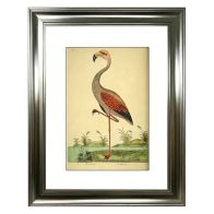 See more information about the Tropical Birds Flamingo Framed Print Wall Art 16 x 12 Inch