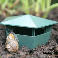 See more information about the Growing Patch 2 Pack Slug And Snail Traps