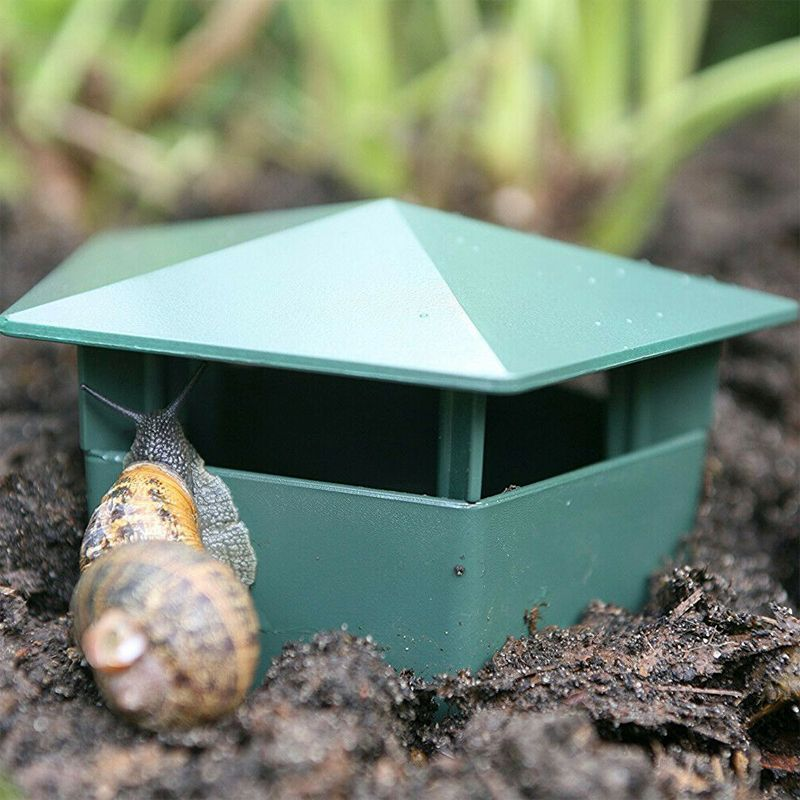 Growing Patch 2 Pack Slug And Snail Traps