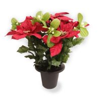 See more information about the Poinsettia & Mistletoe Grave Pot - Red