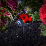 See more information about the Ladybird Stake Light Triple Pack