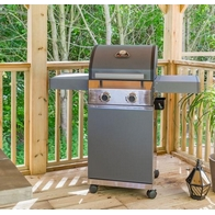 See more information about the Grillstream Stainless Steel Classic 2 Burner BBQ  Hybrid Gas/Charcoal