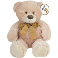 See more information about the Assorted Plush Teddy (35cm) - Brown