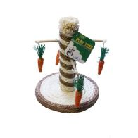 See more information about the Small Pet Play Tree