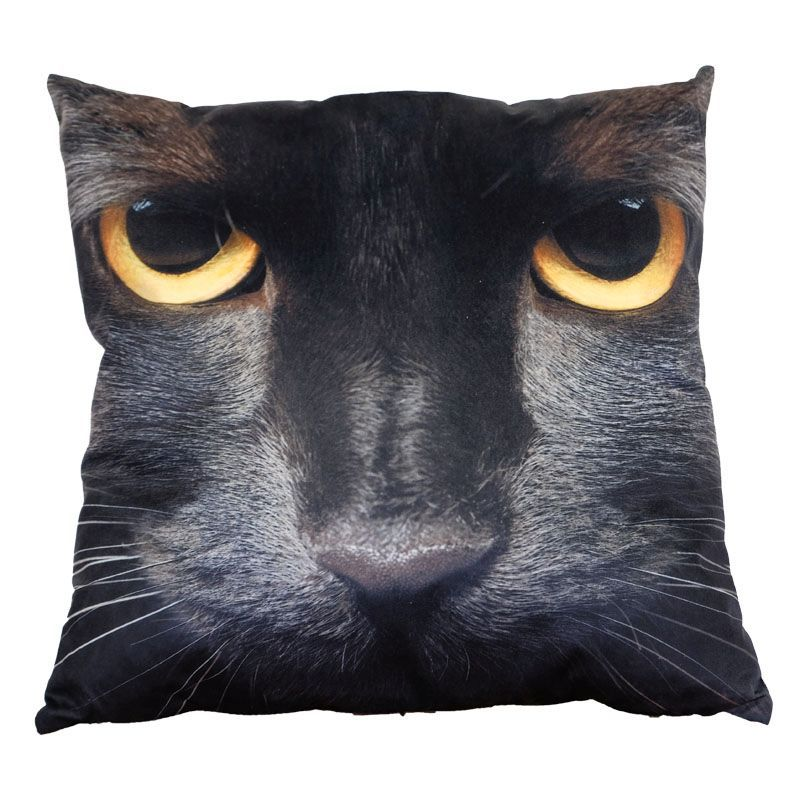 Photographic Animal Cushion 70 x 70cm (Black Cat)