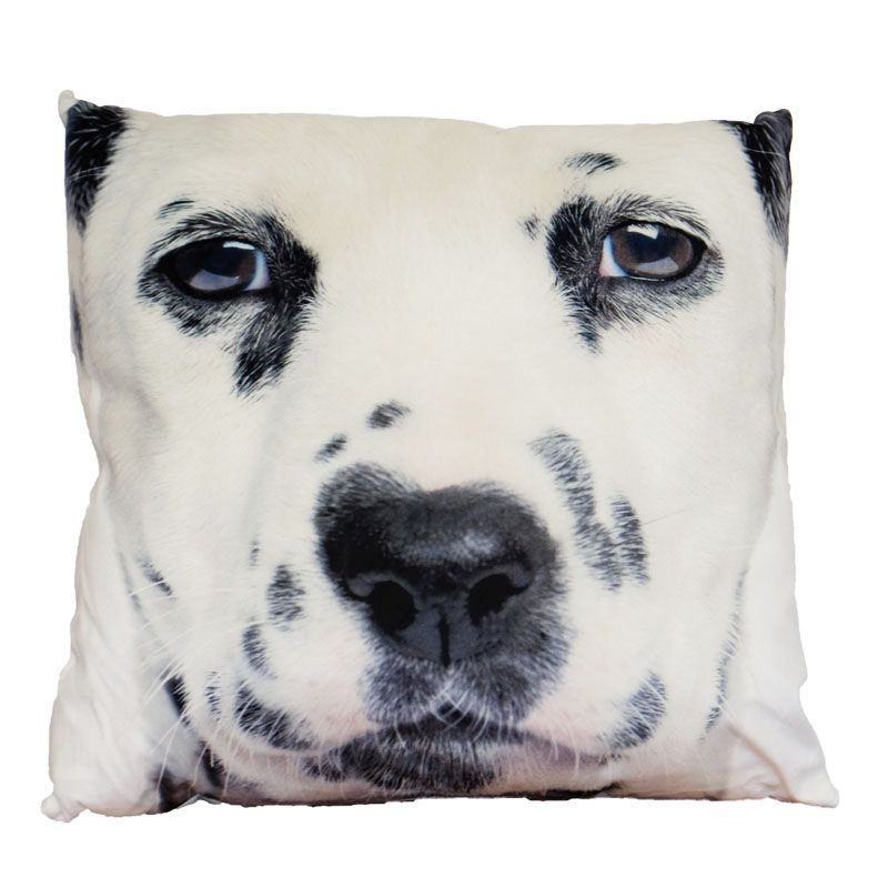 Photographic Animal Cushion 70 x 70cm (Dalmatian)