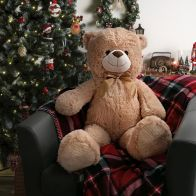 See more information about the Jumbo Bear Plush Cuddly Toy 100cm