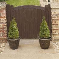 See more information about the Pair Of Buxus Box Pyramids