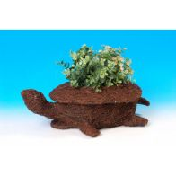 See more information about the Tortoise Planter
