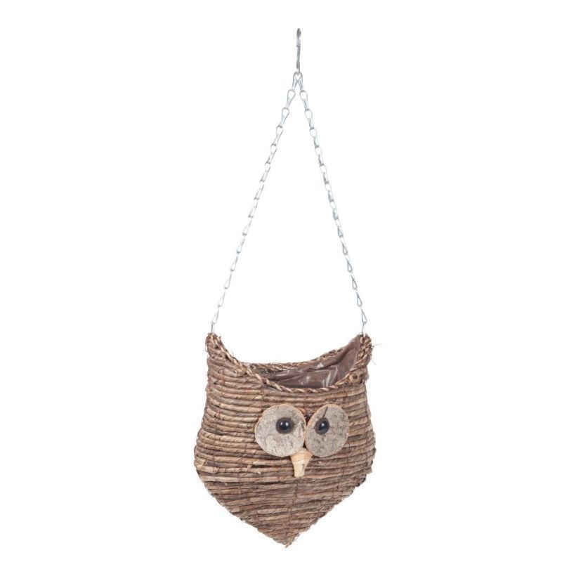 Wise Owl Hanging Planter