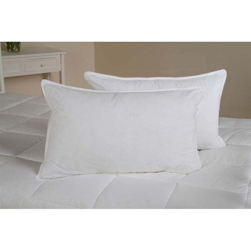 Anti Allergy Duck Feather Down Pillows 2 Pack Buy