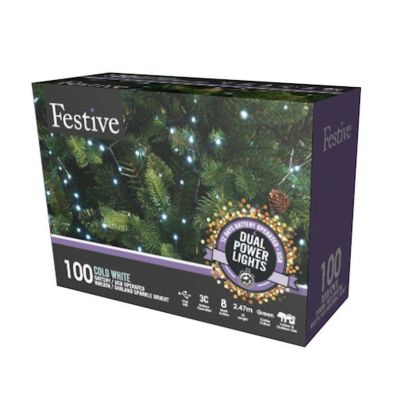 100 LED White Outdoor Animated Fairy Lights Dual Power 2.5m