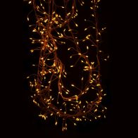 See more information about the 240 LED Amber 300cm Copper Cluster Dewdrop Christmas Lights