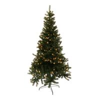 See more information about the 180cm (5 Foot 10 inch) Green Lit Grenoble Pine 665 Tips With 200 LEDs