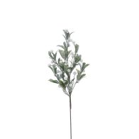 See more information about the Festive Berries Branch Stem White & Frosted 60cm