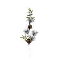 See more information about the Festive Bristle & Pine Cone Branch Stem Natural 60cm