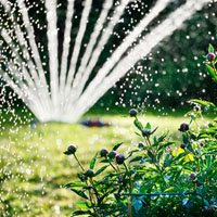 Garden Watering & Irrigation